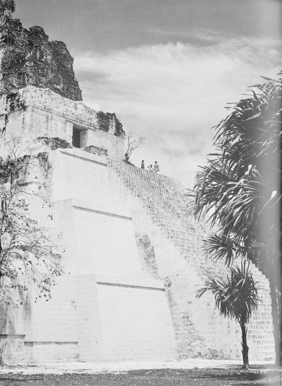 Although many of the major structures at Tikal, such as Temple II shown here, have been excavated and repaired, countless others remain for future study and restoration.