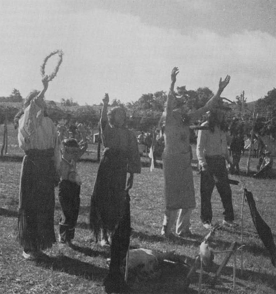 Native American Sun Dance: Important Ceremony Of The Plains ...