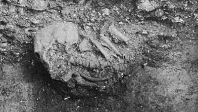 Burial with half its body missing; note burial pit below skeleton.