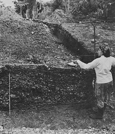 "Irene Borgogno, graduate student in the Department of Anthropology, one of the Ford trainees, ""stringing"" the natural strata before drawing the profile of H trench."