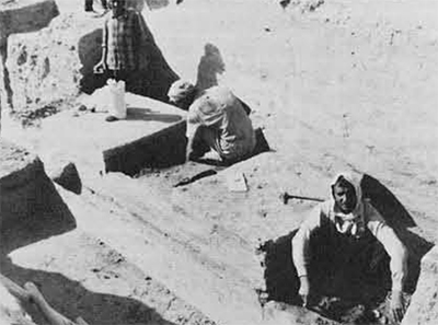 Workmen collecting ash samples for floatation of seeds from Ali Kosh Phase levels in Tepe Ali Kosh, excavated under the direction of Dr. Frank Hole, Rice University, Texas.