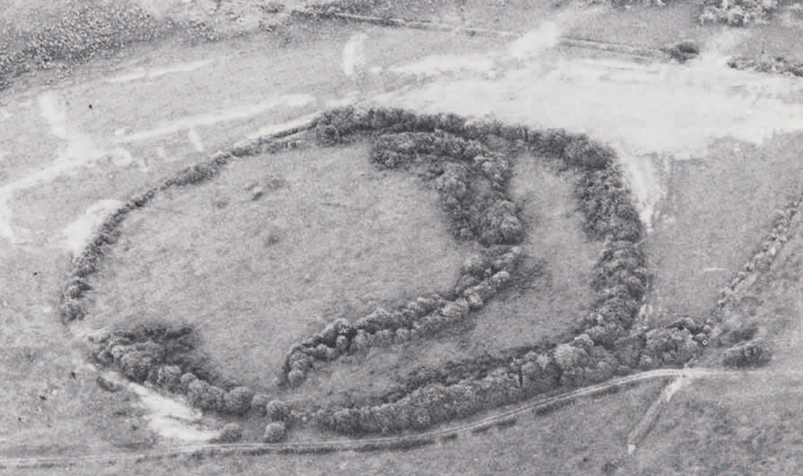 Derryvella, Co. Tipperary. Probably an early Christian Period monastic enclosure.