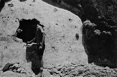 The Author examines a new dwarfed hippo site between the villages of Kato Dhikomo (then Greek) and Aghirda (Turkish) in the Kyrenia Mountains. The whitish-yellow plastered face said to be a human crypt though hippo bones were found inside as well as stratified below the plaster. The stratified  breccia can be seen to the right of the author.