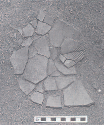 Sherds belonging to vessel D as found below the collapsed north wall of the structure.