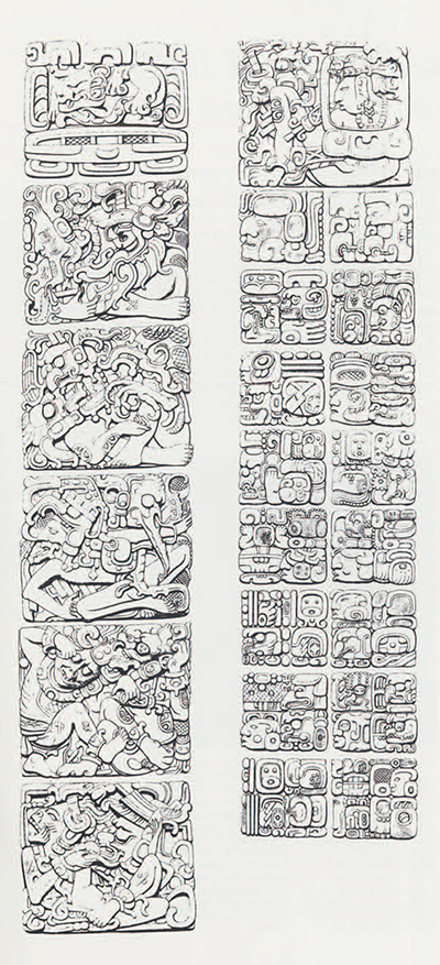 Anne Hunter's drawing of the east side of Stela D at Quirigua. (Biologia Centrali-Americana, Pl. 25)