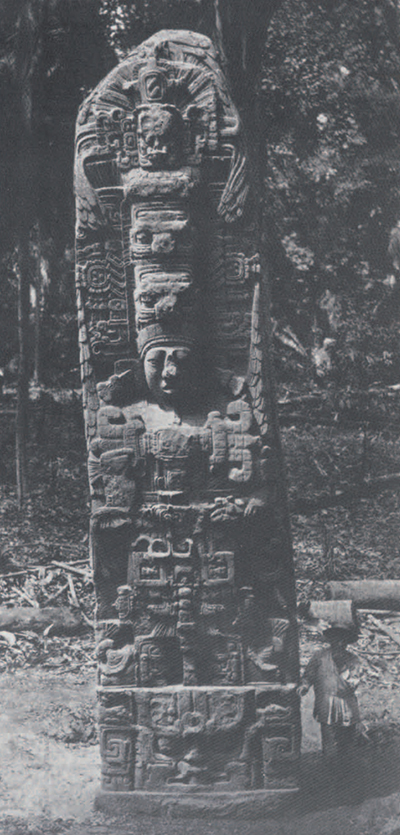 The north face of Stela D at Quirigua. (Biologia Centrali-Americana Pl .22)