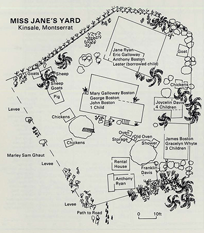This 1985 map of Miss Jane's yard in Kinsale, Monterrat, shows the arrangement of houses, plants and animal pens that is still common in the West Indies.