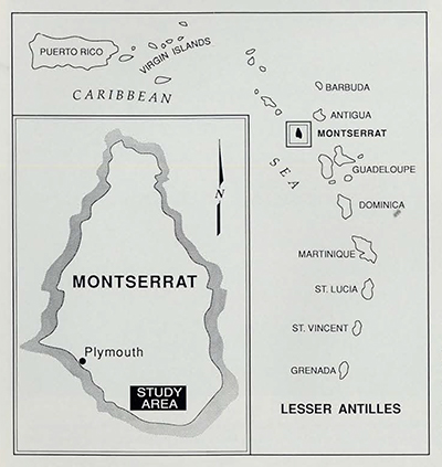 The site of the field research for this study, Galways Mountain, lies in the southwest of Montserrat, an eastern Caribbean volcanic island of 39 square miles. Montserrat was settled by the British in 1632 and eventually contained more than 100 sugar plantations. It remains, by choice, one of the very last British colonies.