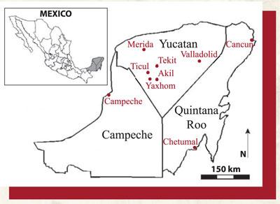 Expedition Magazine  Bullfights in Mayaland