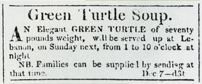 turtle_soup_advert
