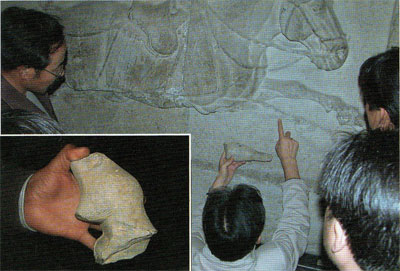 Archaeologists matching an excavated hoof fragment to one of the Beilin Museum horse reliefs. Inset: Another excavated fragment shows individual hairs.