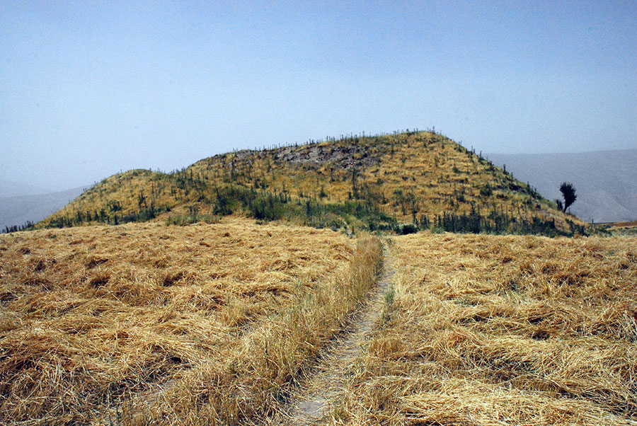 RAP conducted excavations at the mound of Gird-i Dasht.