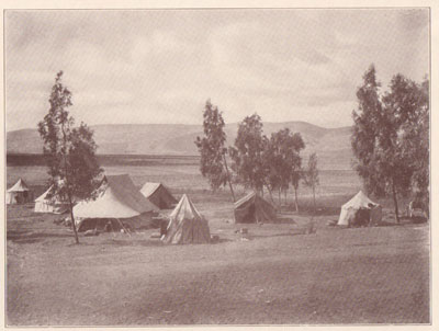Fig. 19.  The Camp of the University Museum Expedition at Beisan.  Showing Mount Gilboa in the Distance.