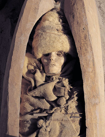 Photo of mummy