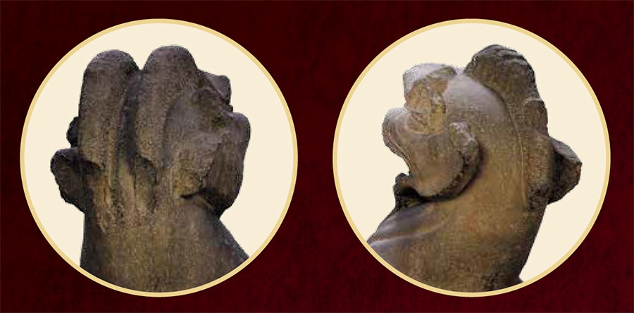 Photo of statue horns