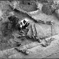 Photo of skeletons