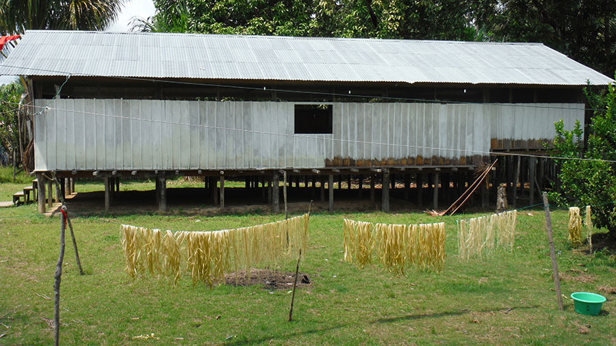 Photo of fibers drying