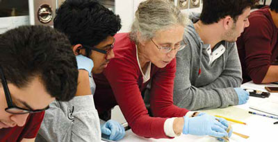 Students working with a professor in the lab