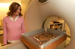 Aubrey Baasdgaard CT scans the skull at the University of Pennsylvania Hospital