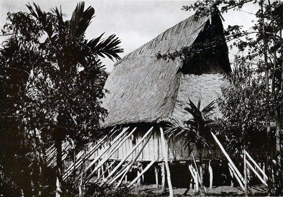 A house on stilts with poles stabilizing it and roof made of leaves