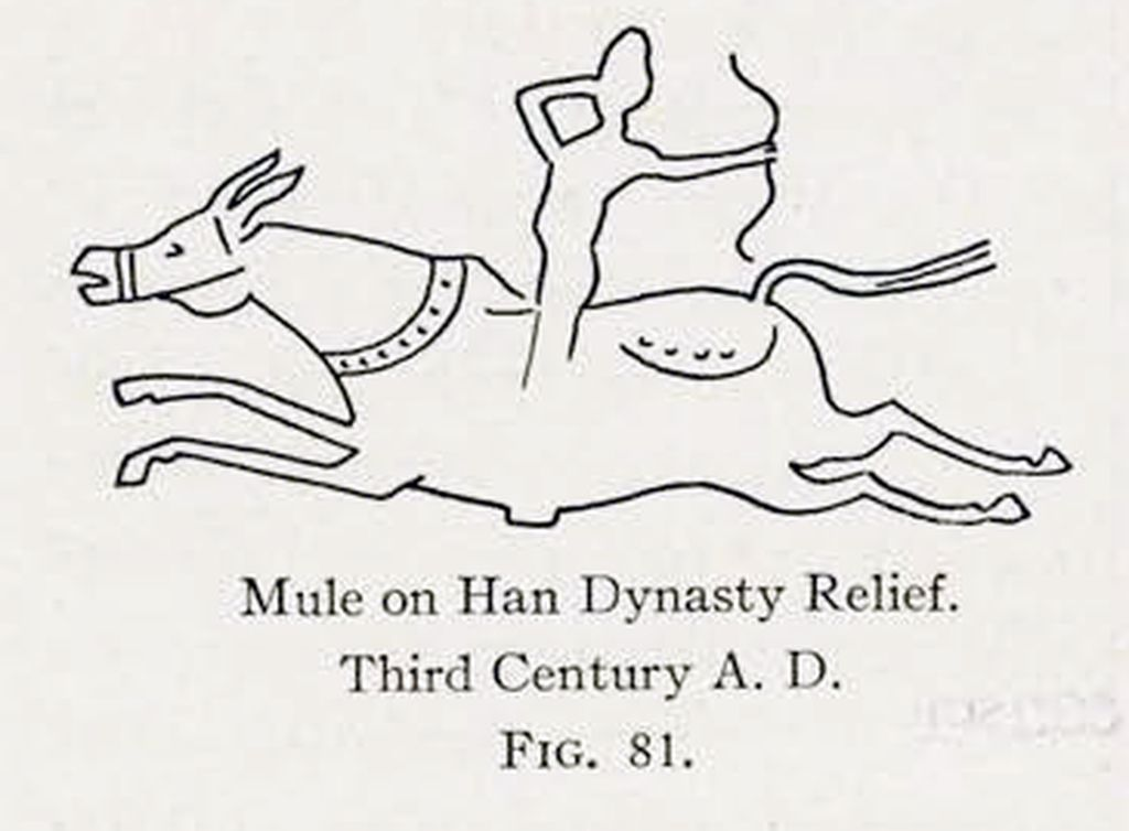 Drawing of a relief of a mule and rider